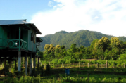 Get Best Tourist Information at Raimatang,  Dooars Jungle