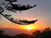 Mansang Offbeat Tourist Destination in Darjeeling