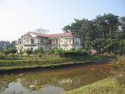 Enjoy Greenchilli's Special Package on Resort in Dooars
