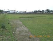 Near Siliguri Town 9 Bigha Land Immediately Sale at Cheap Price