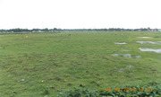 Commercial Land With Ideal Resort Urgently Sale at Best Price