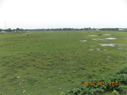 20 Bigha land Sale in Siliguri at Good Price (Near Matigara)
