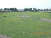 Land Immediately Sale in Siliguri