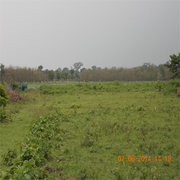 Best Ideal Commercial Land at Alipurduar is on Sale