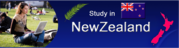 What it is like to study in New Zealand?
