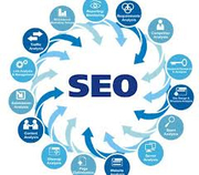 Affordable SEO Services in Kolkata - Rs 5000