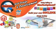Ecommerce Website Design/development
