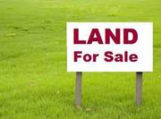 Big Commercial Land Available for Sell