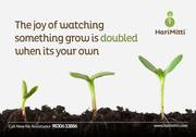 Grow your Own Organic Vegetables at your Rooftop - Agriculture forest