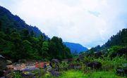 Offbeat Tourist Destination and Sightseeing at Bindu in Dooars