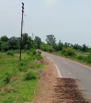 20 acre land for sell in Radhamohanpur,  Ausgram2,  Bardhaman,  WB.