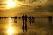 Best Quality Hotels in Digha and Mandarmani for sale